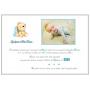 Livre d'Or en Bois Baptême garçon Ours avec nœuds bleu