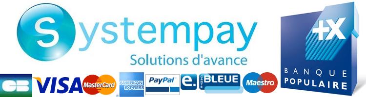 Logo de paiement Banque Populaire